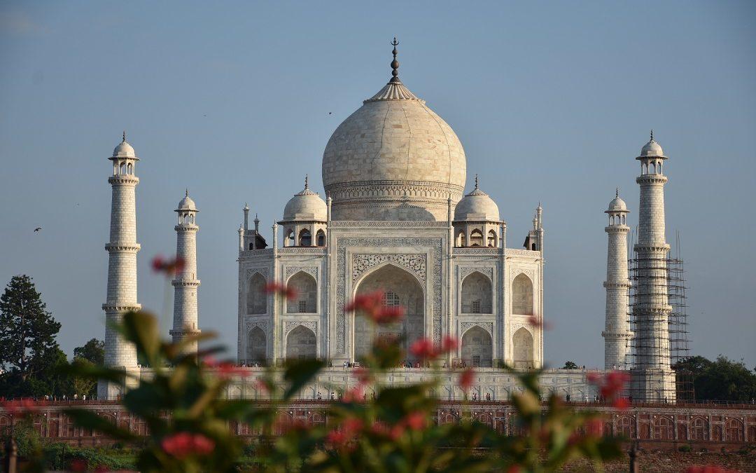 India: come ottenere il visto online.
