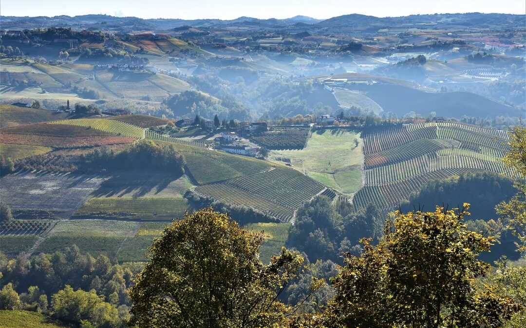 Le Langhe e il Roero: un weekend tra le colline.
